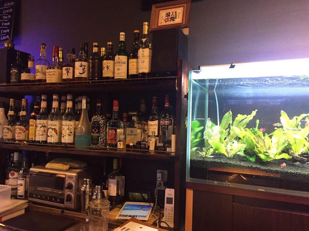 近藤熱帯魚店 アルコール