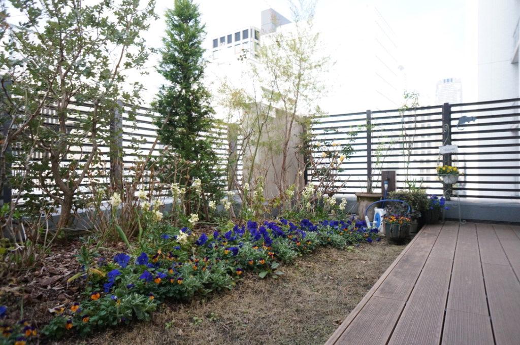 小さなお庭3