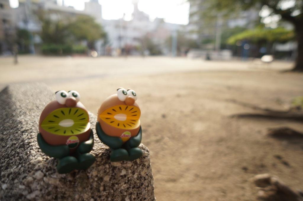 キウイブラザーズ(西九条上公園で撮影)